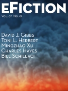 eFictionVol07No01sm